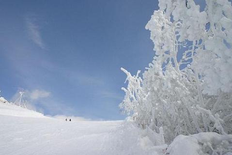 SKI・雪景色